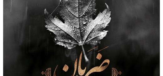 دانلود آهنگ جدید حامد سوهانی بنام ضربان