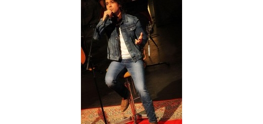 کنسرت آنپلاگد علیرضا قرایی منش در برج آزادی برگزار شد