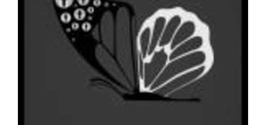 دانلود آلبوم جدید و فوق العاده زیبای آهنگ تکی از شاهرخ افشارفر