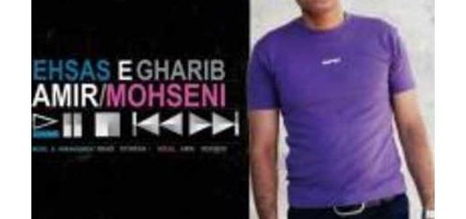 دانلود آلبوم جدید و فوق العاده زیبای آهنگ تکی از امیر محسنی