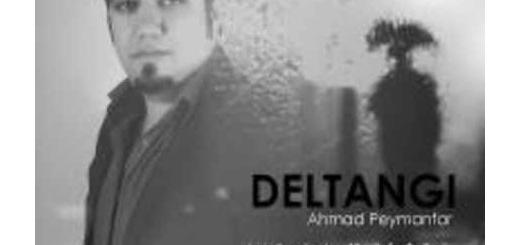 دانلود آلبوم جدید و فوق العاده زیبای آهنگ تکی از احمد پیمان فر