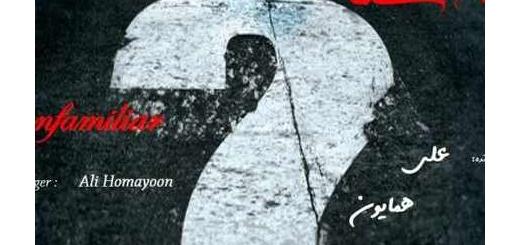 دانلود آلبوم جدید و فوق العاده زیبای آهنگ تکی از علی همایون