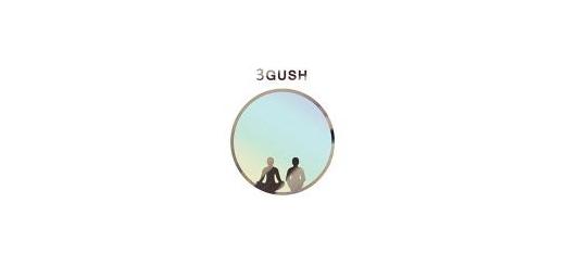 عضو گروه «سه گوش» پس از انتشار دومین قطعه این گروه اظهار داشت؛ موسیقی Chillout را در ایران فراگیر میکنیم