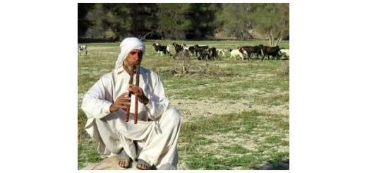 در دهمین دوره جشنواره سینمایی حقیقت مستند «زیمل بلوچستان» بر اساس زندگی موسیقیدان بلوچ به نمایش درمیآید