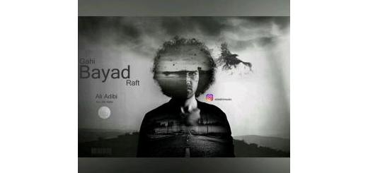 گاهی باید رفت خواننده: علی ادیبی +12-14  plays 4232  0:00  دانلود  Share