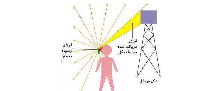 بهترین روش برای خارج کردن امواج الکترومغناطیسی از بدن
