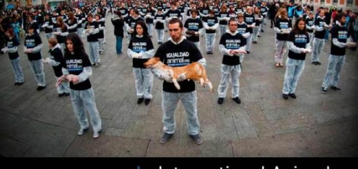 روز جهانی حقوق حیوانات گرامی باد