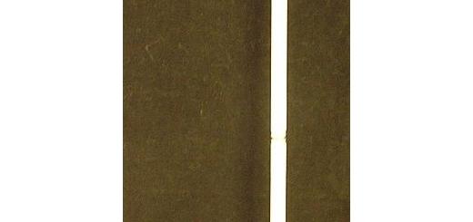 تخفیف ثبت نام آموزشگاه موسیقی فریدونی انواع رشته ها برای نابینایان و روشندلان