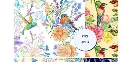 دانلود تصاویر کلیپ آرت پترن با طرح های آبرنگی گل و پرنده