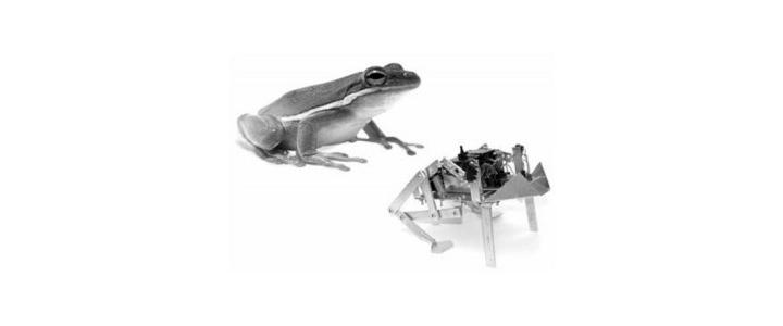 آموزش ساخت ربات قورباغه