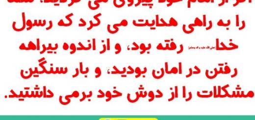 پیروی از امام / مجموعه نهج البلاغه وبصیرت / شماره 102