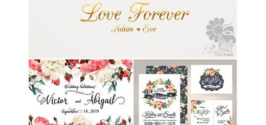 دانلود تصاویر وکتور کارت دعوت وعناصر طراحی جشن عروسی