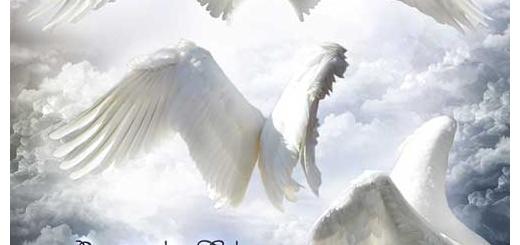 دانلود طرح لایه باز بال فرشته