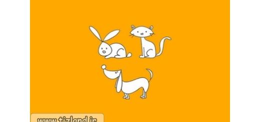 وزن سگ گربه و خرگوش را بیابید