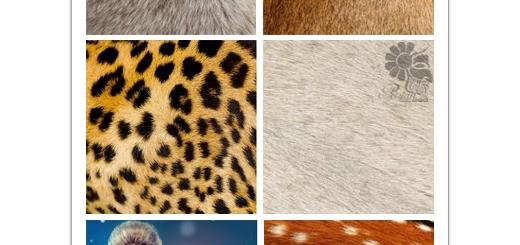 دانلود تصاویر با کیفیت خز طبیعی