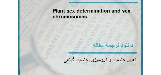 مقاله ترجمه شده در مورد تعیین جنسیت و کروموزوم جنسیت گیاهی (دانلود رایگان اصل مقاله)