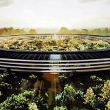 نگاهی به نیمه تاریک شرکت های فناوری