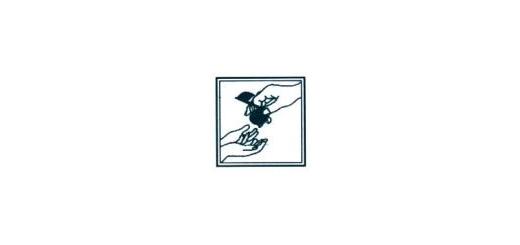 سرایش سرایش آموزشگاه موسیقی سرایش مدیریت: کامبیز روشن روان  رشته ها: پیوند شعر و موسیقی، اصول آهنگسازی(هارمونی، کنترپوان، ارکستراسیون، فرم و آنالیز)، کنکور هنر موسیقی، مبانی اجرائی موسیقی، تئوری و سلفژ، موسیقی کودکان (ارف)، سازهای ایرانی و کلاسیک، آواز(ای