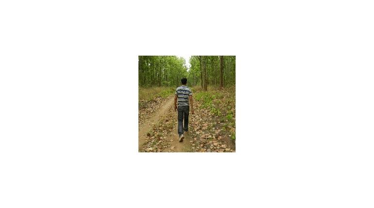 داستان کوتاه – A Walk in the Wild