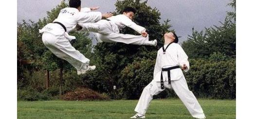 مقایسه و تفاوت های تکواندو و کاراته و کونگ فو