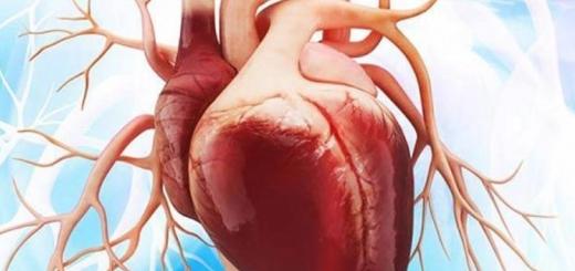 شلی دریچه قلب
