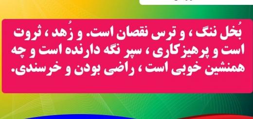 شناخت ضد ارزش ها 2 / مجموعه اخلاقی امام الحکیم / شماره 3