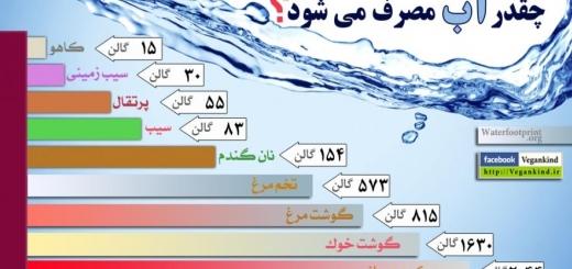 برای تهیه غذایی که میخورید چقدر آب مصرف میشود ؟