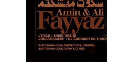 Amin Fayyaz & Ali Fayyaz - Sokooto Mishkanam