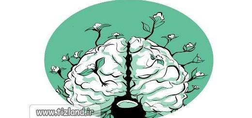 9 راه موثر برای پرورش قدرت مغز