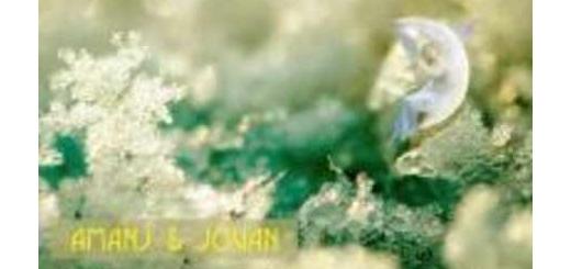 دانلود آلبوم جدید و فوق العاده زیبای آهنگ تکی از ژوان