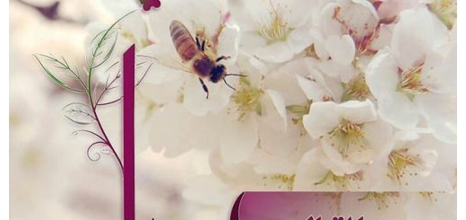 دانلود آهنگ جدید رضا اقبالی بنام بهار