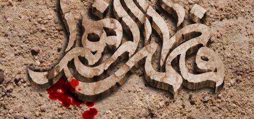 انسان ۲۵۰ ساله | زندگی جهادی حضرت زهرا سلاماللهعلیها
