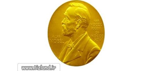 جایزه ی نوبل و ریاضی دانان