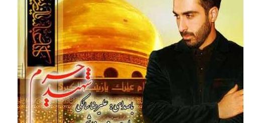 دانلود آلبوم جدید و فوق العاده زیبای آهنگ تکی از علیرضا سالکی