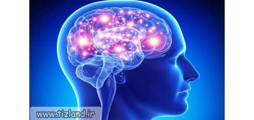 10 ترفند علمی برای تقویت حافظه