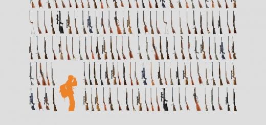هر محیط بان در برابر ۳۰۰ اسلحه شکاری