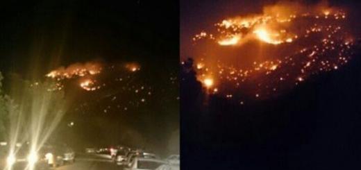 جنگل های بلوط ایلام در آتش سوخت