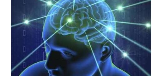 جیپیاس مغز شناسایی شد