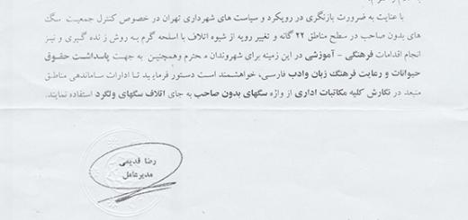دستورالعمل تحسین برانگیز شهرداری تهران برای حذف واژه سگهای ولگرد