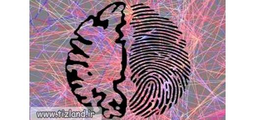 مغز مانند اثر انگشت منحصر به فرد است!
