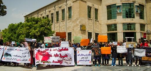 تجمع حامیان حیوانات در مقابل شهرداری شیراز