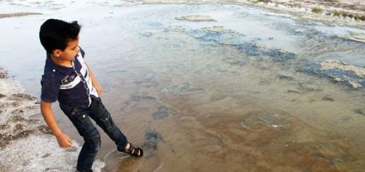 زاینده رود به تالاب خشکیده گاوخونی رسید