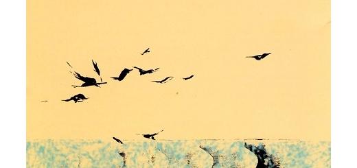 انتشار دو اثر از محمدرضا تفضلی