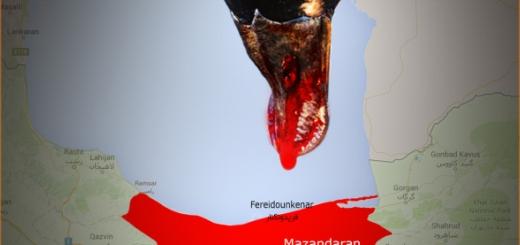 واکنش رضا کیانیان به کشتار پرندگان مهاجر