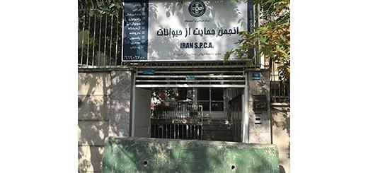 هدیه عجیب شهرداری منطقه 6