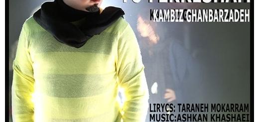 دانلود آهنگ جدید کامبیز قنبرزاده بنام تو فکرشم