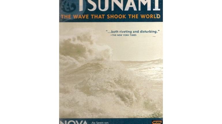 دانلود مستند سونامی اندونزی The Wave That Shook The World