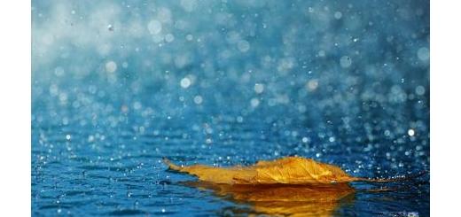 وقتی که باران می بارد