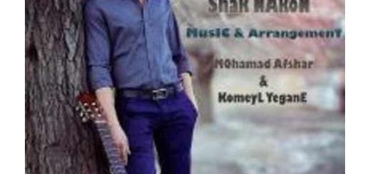 دانلود آلبوم جدید و فوق العاده زیبای آهنگ تکی از علی زماندان
