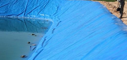 غرق شدن وحوش پارک ملی گلستان در استخر کشاورزی